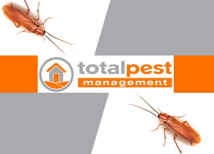 Total Pest Management