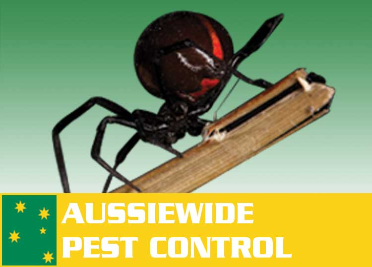 Aussiewide Pest Control