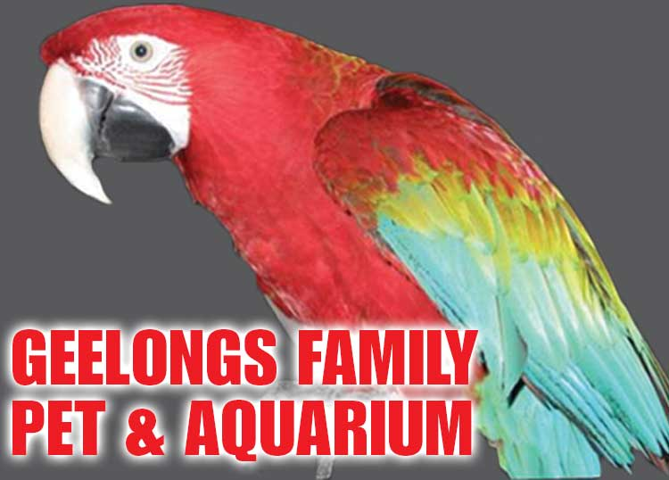 10 Off Storewide From Family Pet And Aquarium