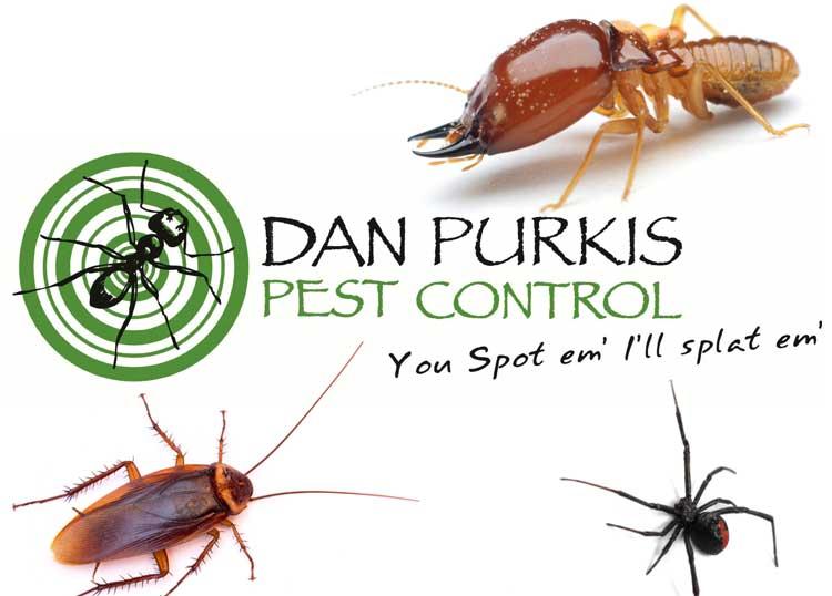 Dan Purkis Pest Control