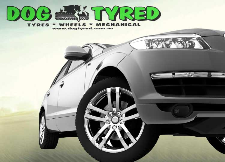 Dog Tyred
