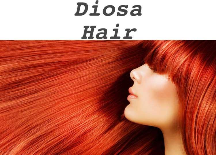 Diosa Hair