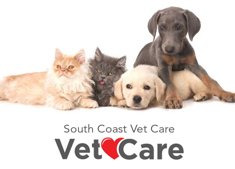South Coast Vet Care