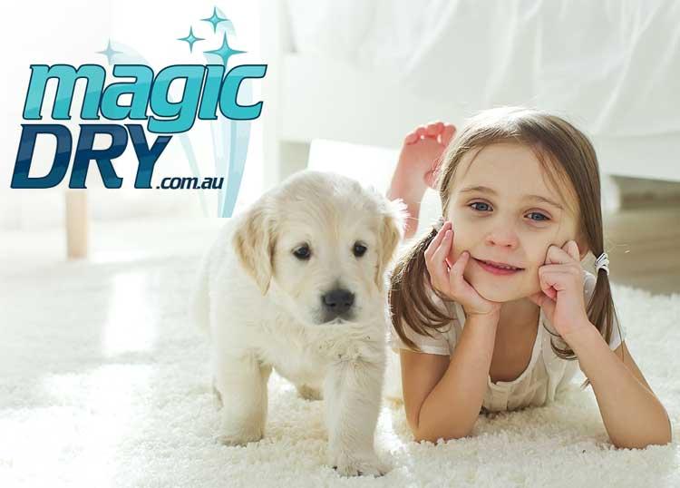 Magic Dry Carpet Care