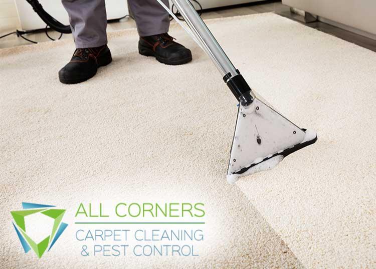 All Corners Carpet Cleaning