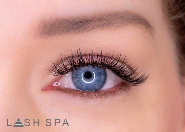 The Lash Spa