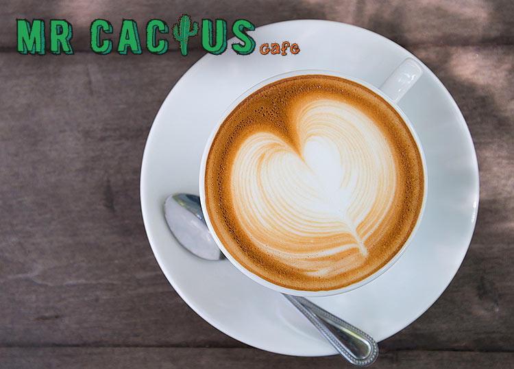 Mr Cactus Cafe