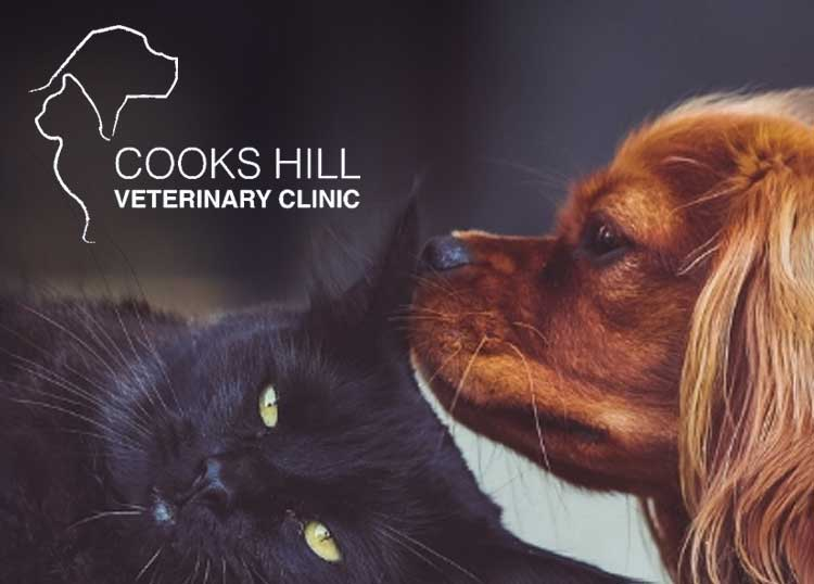 Cooks Hill Veterinary Clinic