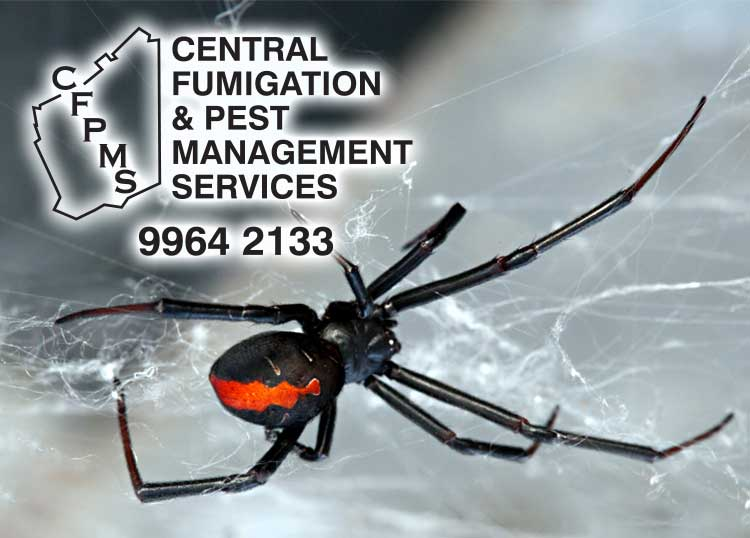 Central Fumigation & Pest Mgt Serv
