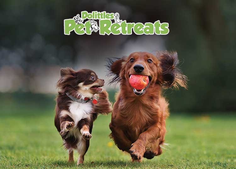 Dolittles Pet Retreats