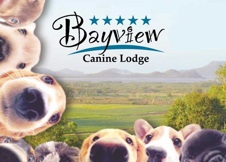 Bayview Canine Lodge