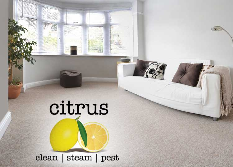 Citrus Steam Clean Pest