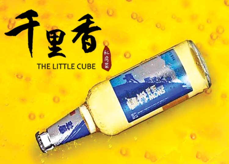 The Little Cube