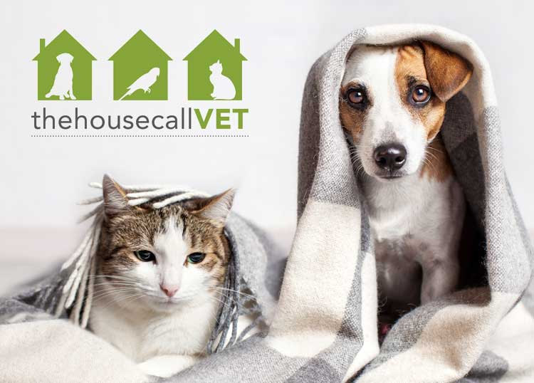 The House Call Vet Sunnybank
