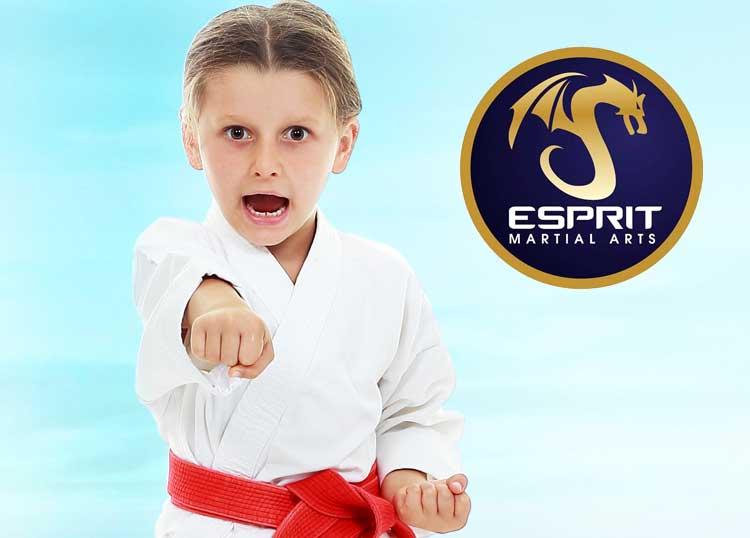 Esprit Martial Arts