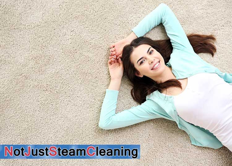 Not Just Steam Cleaning