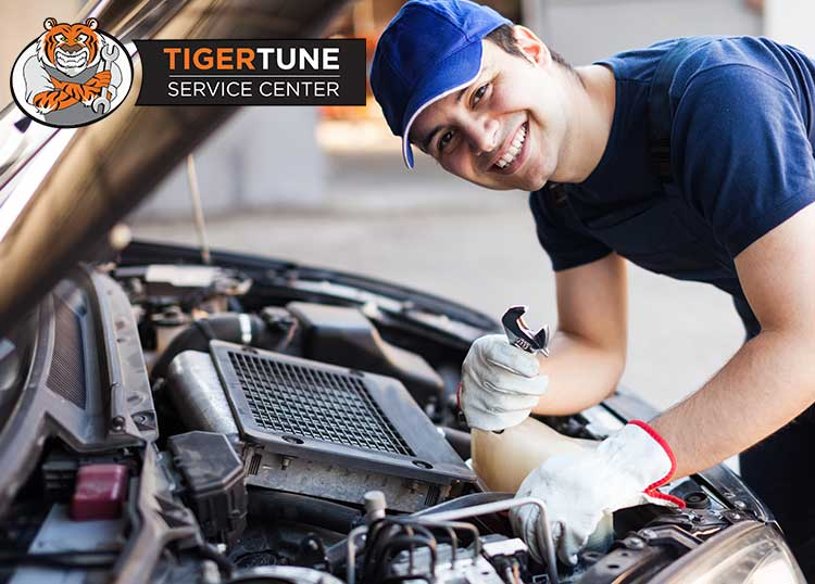 Tigertune Service Centre