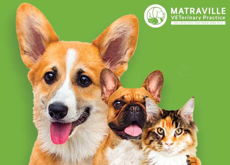 Matraville Veterinary Practice