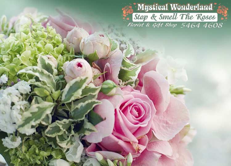 Mystical Wonderland