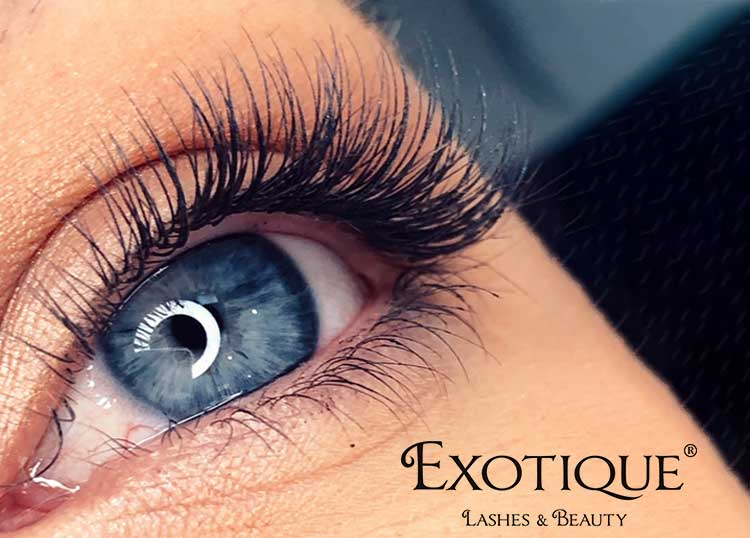 Exotique Lashes & Beauty