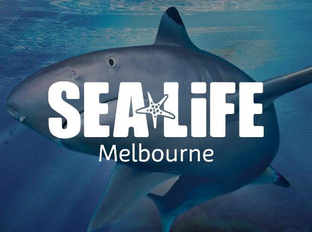 Sea Life Aquarium Melbourne